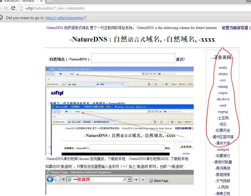 via-naturedns-in-homepage