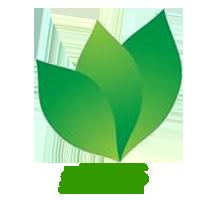 gMIS Logo